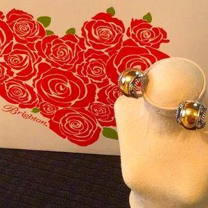 ❤️Brighton Hoop Earrings (retired)
